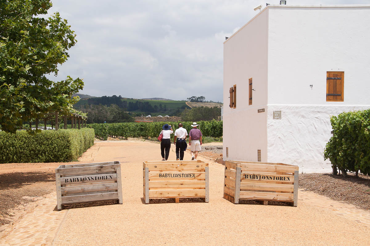 people walking in Babylonstoren wine farm