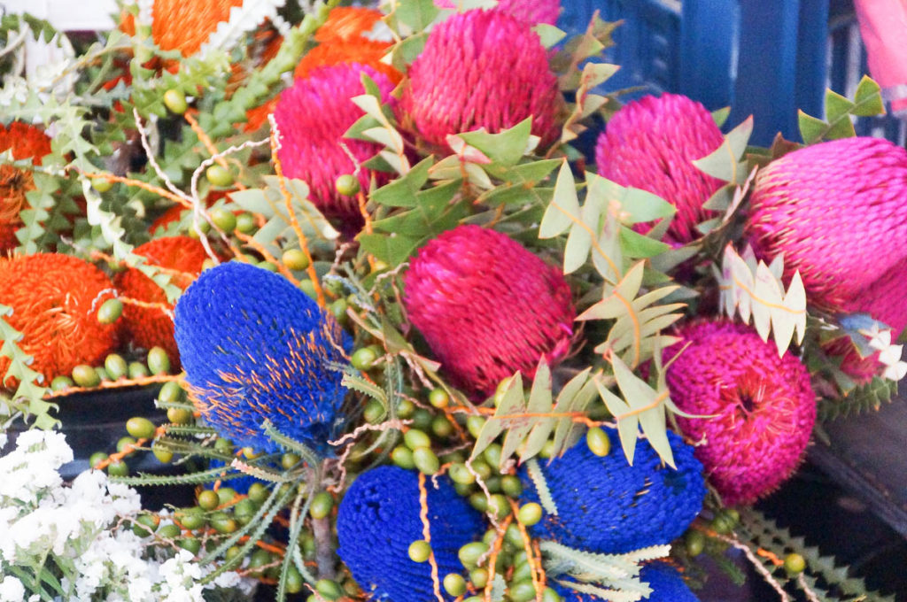 pink and blue flowers at Capetown market