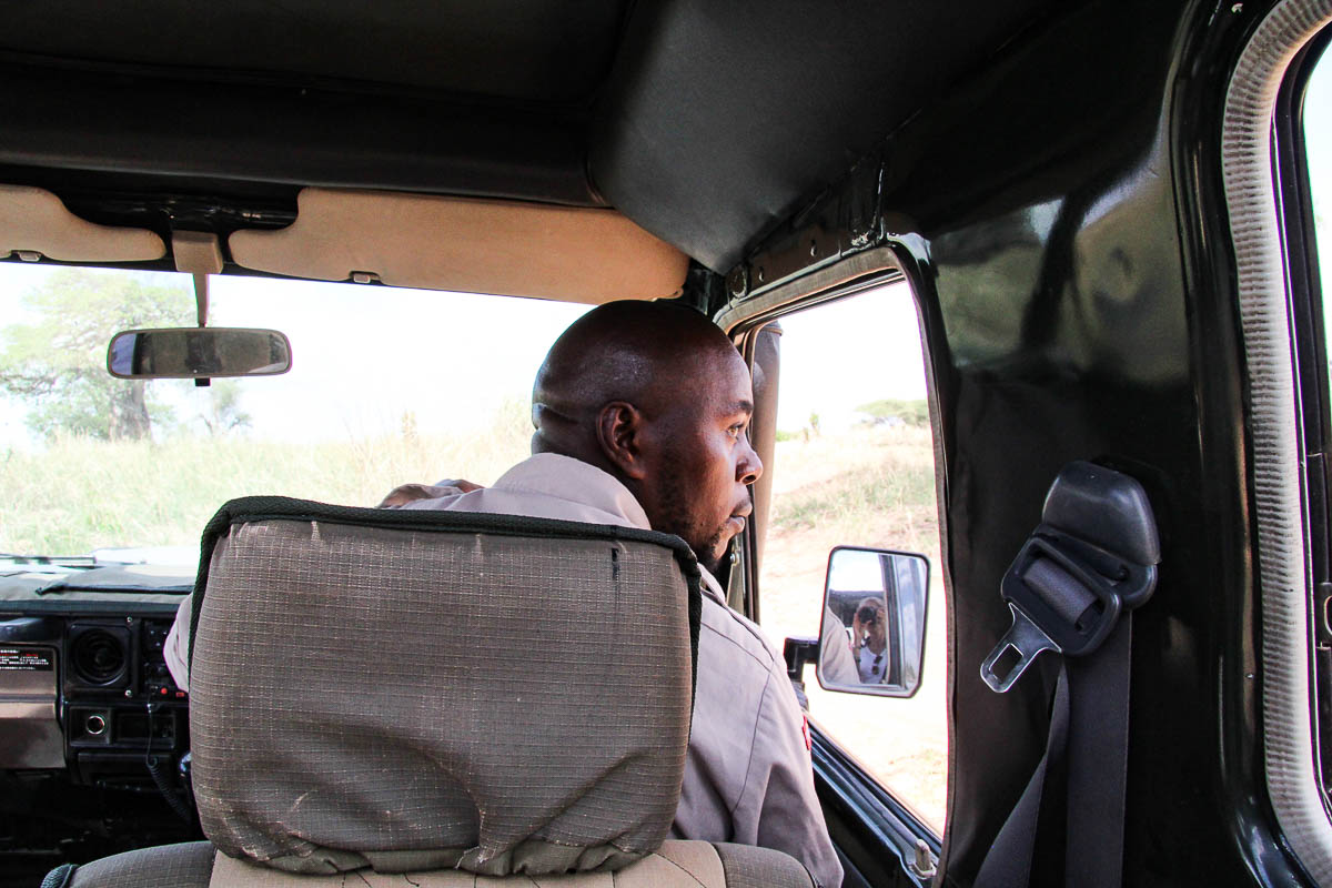safari guide in Tarangire Nationalpark