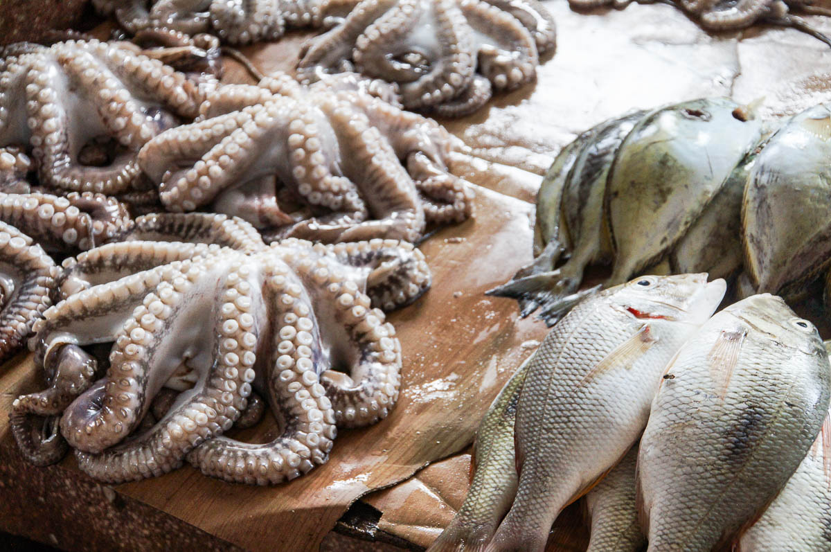 octopus at fish market in stonetown for selling