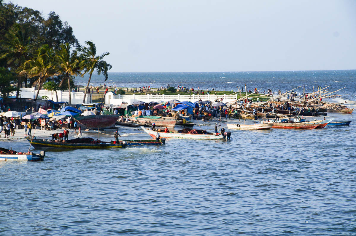 fisher boats while arriving at Daressalam harbour