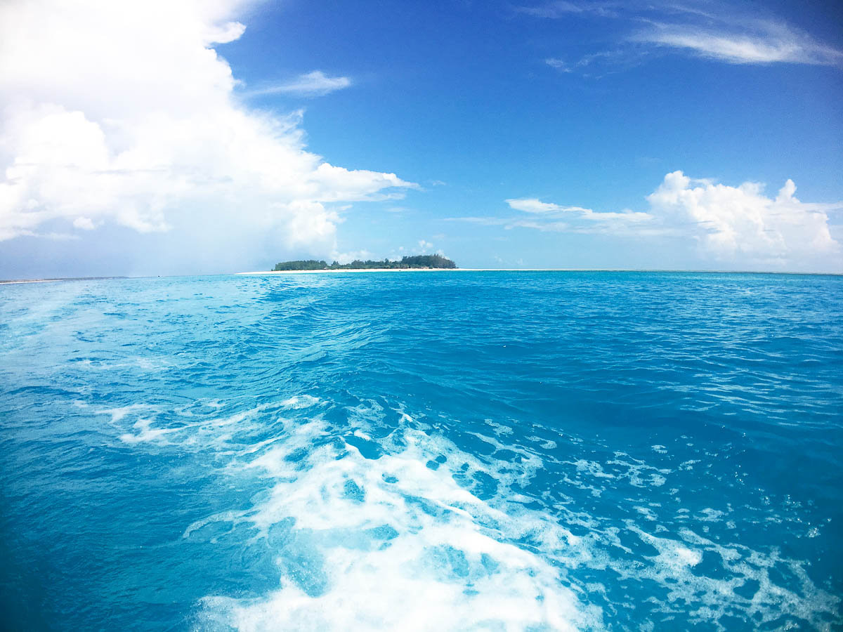 leaving mnemba atoll after diving